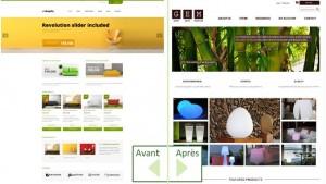 """Personnalisation du thème """"Shopifiq"""" proposé par Anps"""